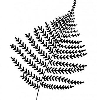 Affiche-papier-La-fougere-Les-petites-hirondelles